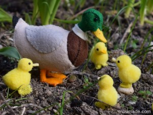 Felt Mallard Duck with pom-pom ducklings