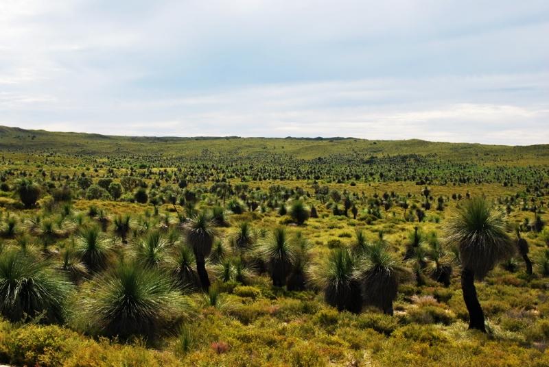 länsi-australian maisemia