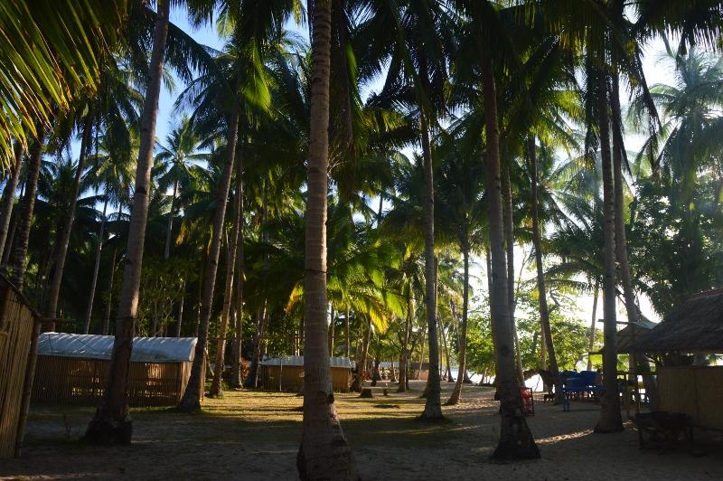 Tao Philippinesin saarihyppely Coronilta Palawanille