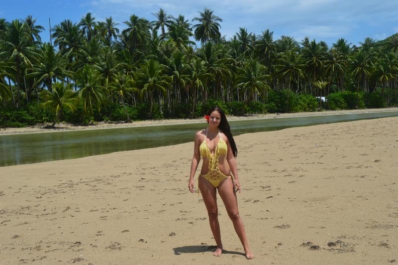 Autio palmuranta Palawanilla