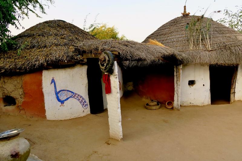 bishnoi-kylässä