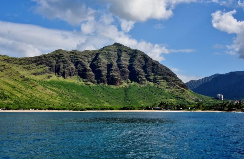 Aamu-uinti delfiinien kanssa Havaijilla