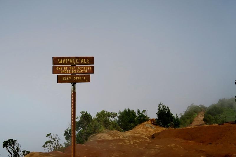 Kauai wettest spot on earth