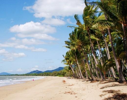 Pohjoinen Queensland | Palm Cove