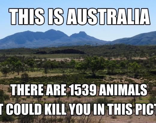 Australian vaaralliset eläimet