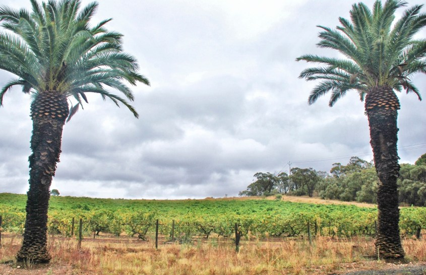 Barossa Valley Australia