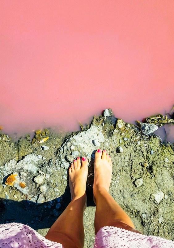 Australian pinkit järvet