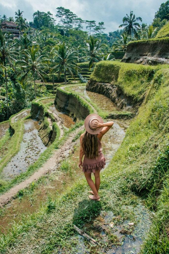 Ubud nähtävyydet | Riisiterassit