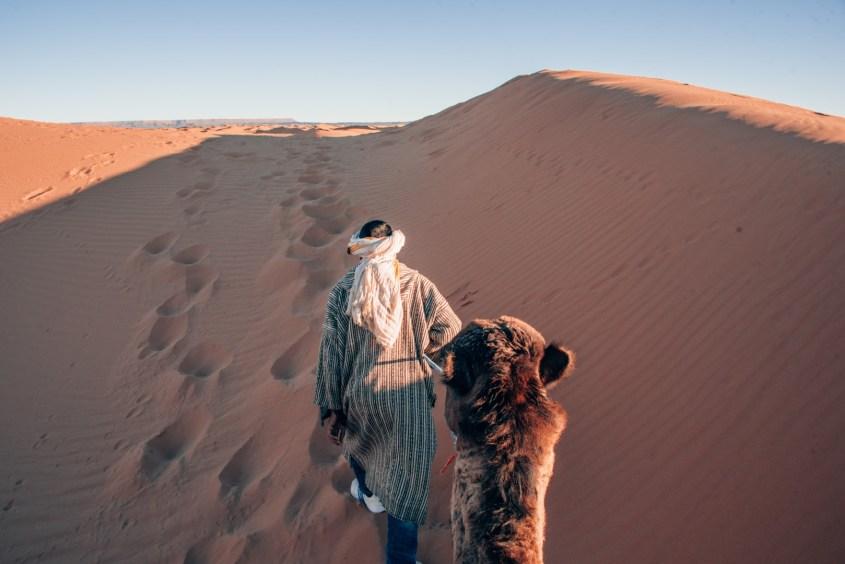 kameliratsastus saharassa