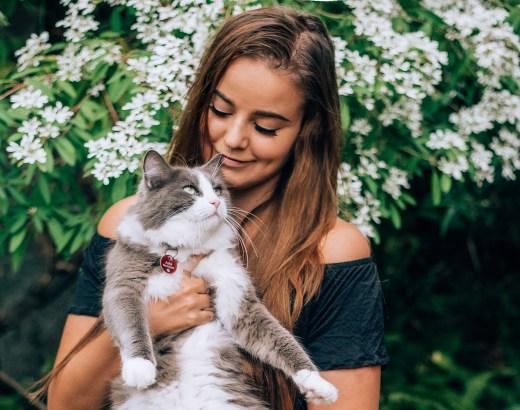 Lemmikkivahti | Talovahti