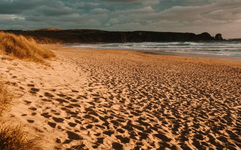 Phillip Island | ranta