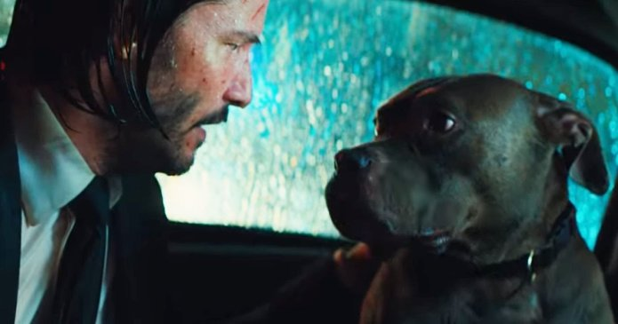 Movie of The Week: John Wick: Chapter 3 – Parabellum - image  on https://muvison.com