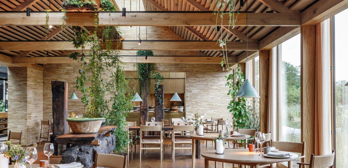 noma-restaurant-dinning