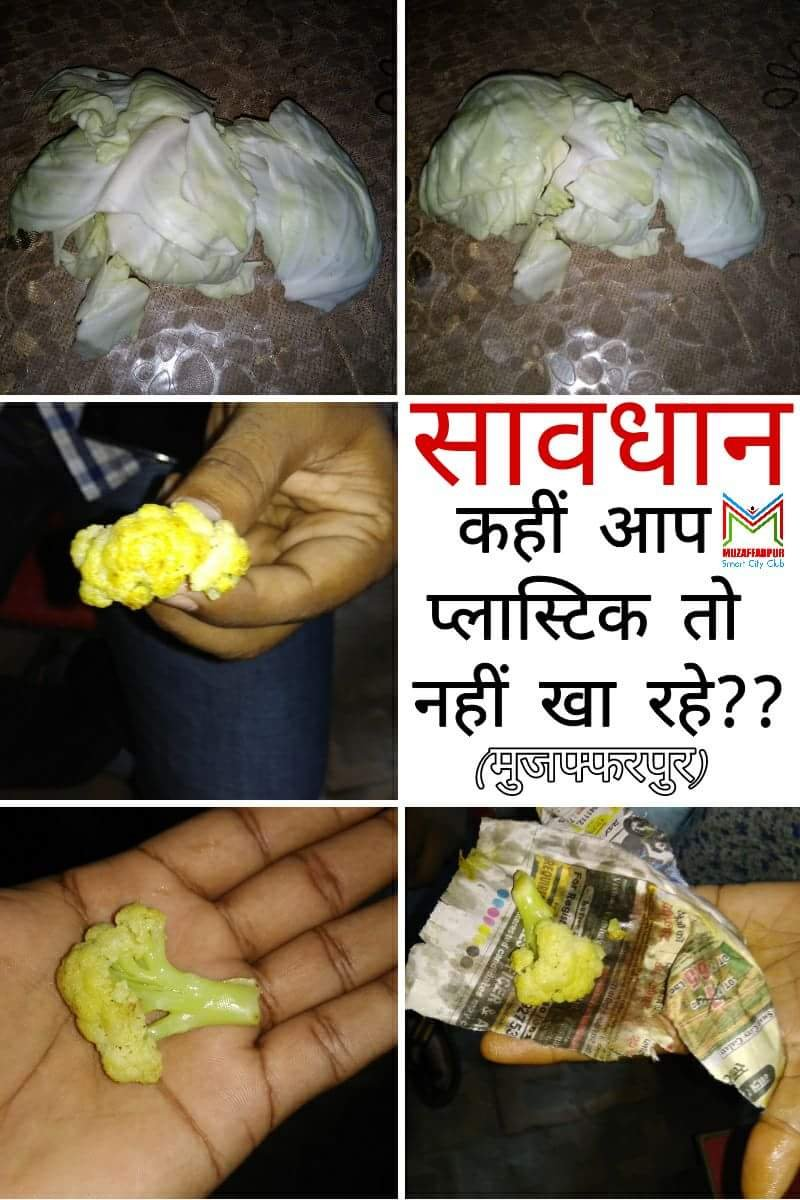 plastic cabbage in muzaffarpur