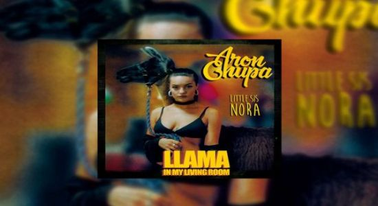 AronChupa, Little Sis Nora - Llama In My Living Room czasoumilacz