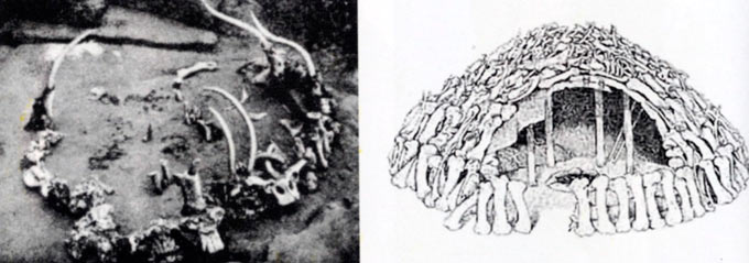 Кружна основа од мамутни коски најдена во Мезин, Украина; (десно: реконструкција). Ловците на мамути често целиот шатор го граделе од мамутови коски и го покривале со кожи.