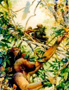 Нашите најрани предци и нивната еволуција