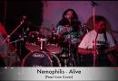 Alive – Nemophilis,Pearl Jam Cover Live At CRCC Pune
