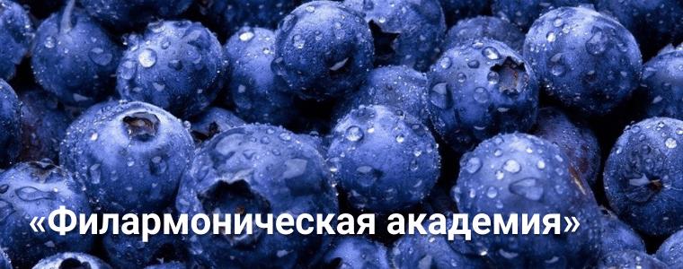 Открытие «Филармонической академии» сезона 2017/2018!