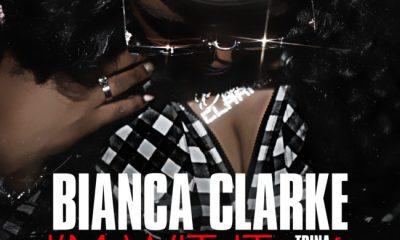 Bianca Clarke Im Wit It Cover Art e1549033086632