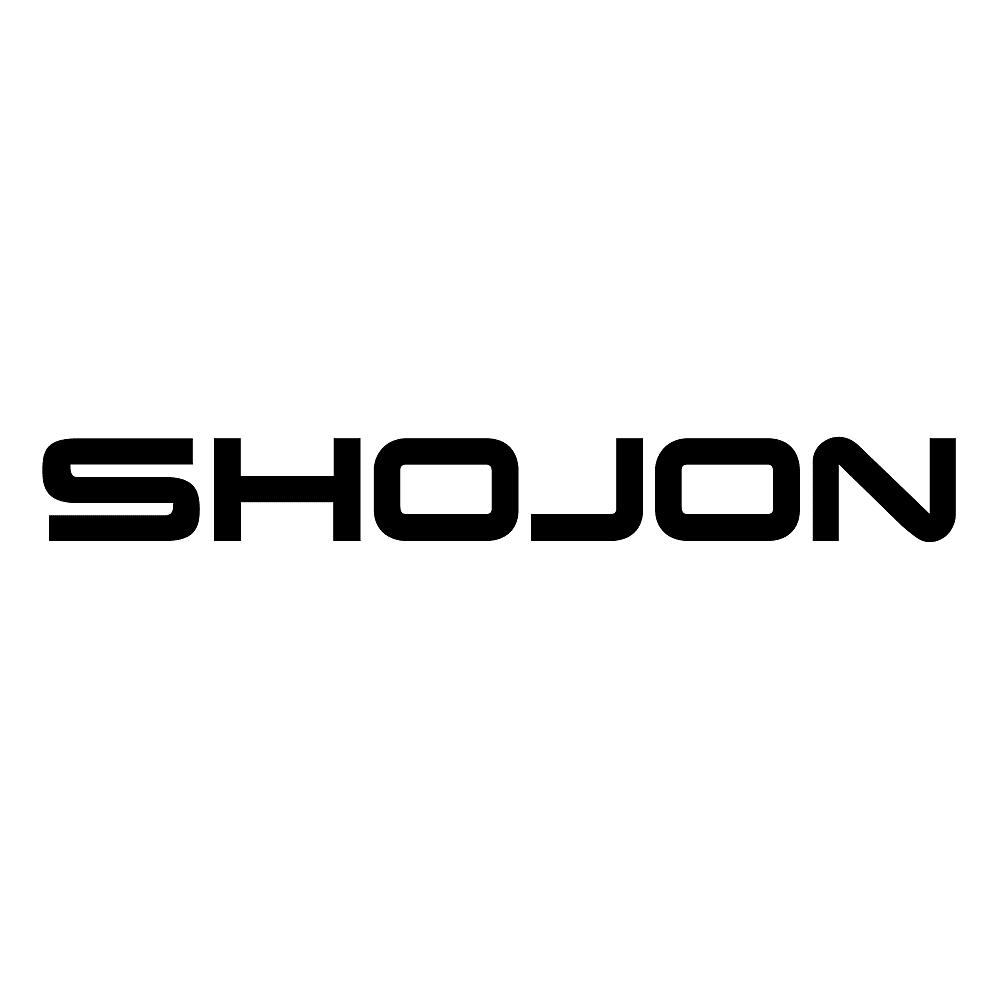 Shojon unveils VFX Music Video for 'Theorem'