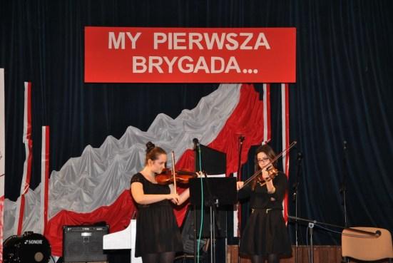 11 listopada 2014 - Sokołów Małopolski_25 (1024x687)