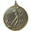 silver-volley