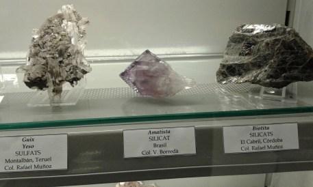 Col. Geologica_MVHN (22)