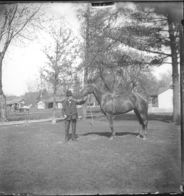 photo of Man with Horse
