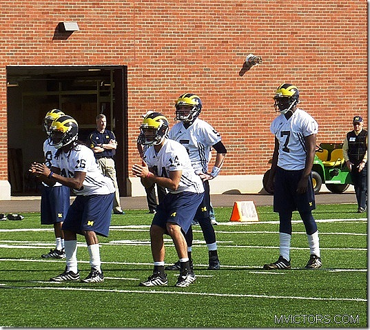 michigan quarterbacks