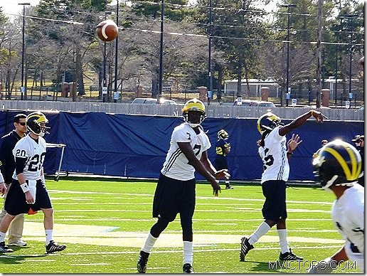devin gardner throws