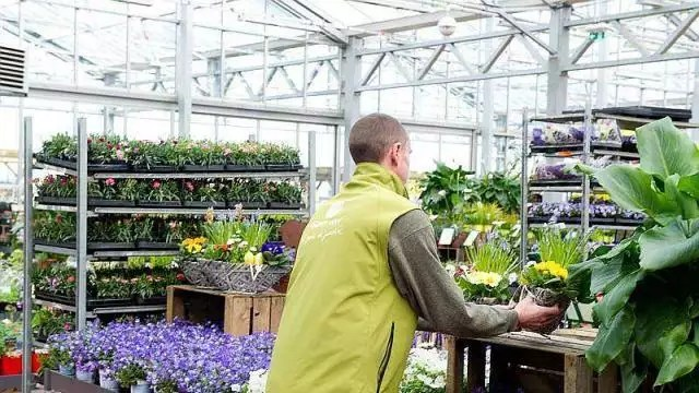 les jardineries gamm vert implantent