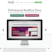 Elegant Themes: The Professional WordPress Theme