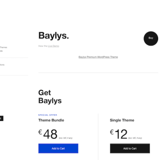 Elmastudio: Baylys WordPress Theme