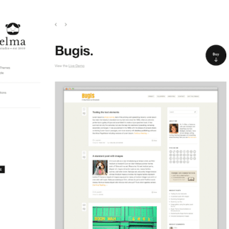 Elmastudio: Bugis WordPress Theme