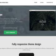 Graph Paper Press: Expo WordPress Theme