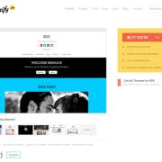 Themify: Bold WordPress Theme
