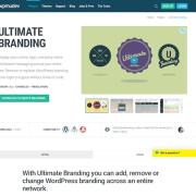 WPMU DEV: Ultimate Branding WordPress Plugin
