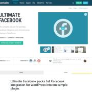 WPMU DEV: Ultimate Facebook WordPress Plugin