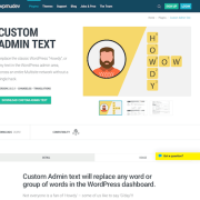 WPMU DEV: Custom Admin Text WordPress Plugin