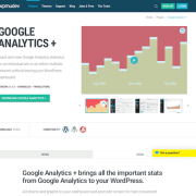WPMU DEV: Google Analytics Plus WordPress Plugin