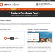 Custom Facebook Feed Pro Personal