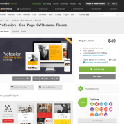 Themeforest: Profession