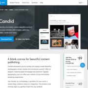 Array Themes: Candid WordPress Theme