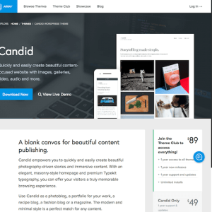 Array Themes: Candid WordPress Theme