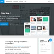 Array Themes: Checkout WordPress Theme