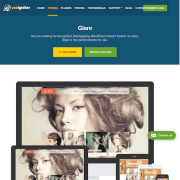 CSS Igniter: Glare WordPress Theme