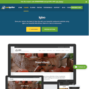 CSS Igniter: Igloo WordPress Theme