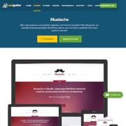 CSS Igniter: Mustache WordPress Theme