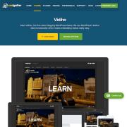 CSS Igniter: Vidiho WordPress Theme